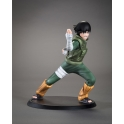 TSUME Art - DXtra -Rock Lee