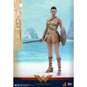 Hot Toys – MMS424 – Wonder Woman –  Wonder Woman (Training Armor Version)