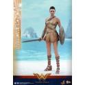 Hot Toys – MMS424 – Wonder Woman –  Wonder Woman (Training Armor Version)