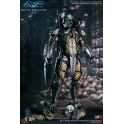 Hot Toys - Alien Vs. Predator - Celtic Predator 2.0