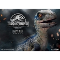[Pre-Order] PRIME1 STUDIO - LMCJW2-01 BLUE (JURASSIC WORLD FALLEN KINGDOM)