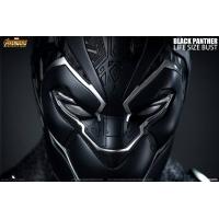 [Pre-Order] Queen Studios - Avengers: Infinity War - Hulk Life Side Bust