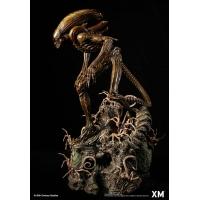 [Pre-Order] XM STUDIO - ALIEN HIVE WARRIOR STATUE