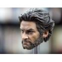 Custom 1/6 Wolverine head