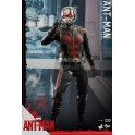 Hot Toys - Ant-Man