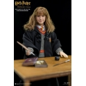 Star Ace Toys - Harry Potter - HERMIONE GRANGER